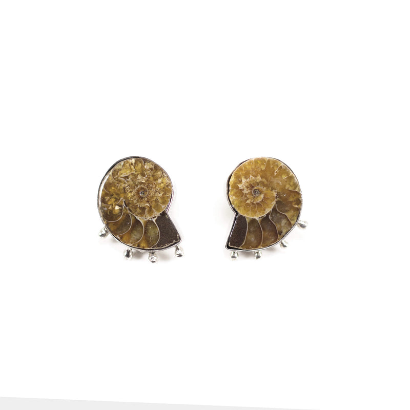 Ammonite Earring