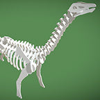 Brontosaurus 3D Instructions