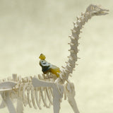 Tiny hand-painted person riding a brontosaurus Tinysaur skeleton