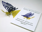 Butterfly miniature skeleton model with instructions and packaging by Tinysaur.us