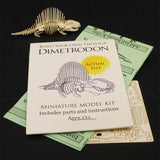Dimetrodon miniature skeleton model with laser cut bones and instructions by Tinysaur.us