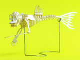 Assembled Fiji Mermaid miniature skeleton model by Tinysaur.us
