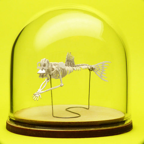 Fiji Mermaid miniature skeleton model in hand-blown glass display dome by Tinysaur.us