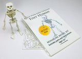 Tiny Human miniature skeleton model with instructions