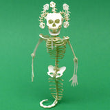 Medusa miniature skeleton model