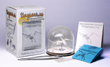 Pterodactyl All-in-one miniature skeleton model kit