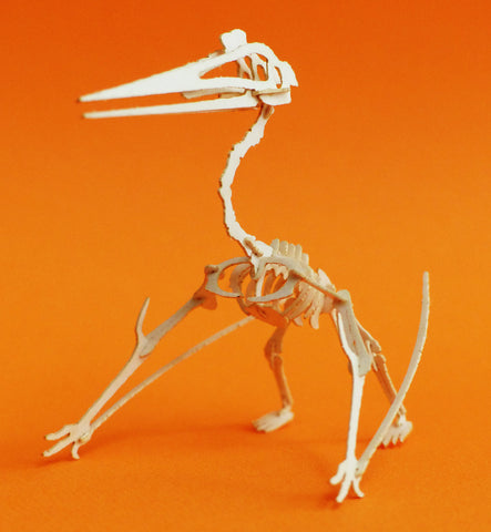 Quetzalcoatlus - Miniature Skeleton Model Kit - Laser Cut Bones With Instructions