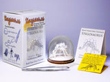 Stegosaurus all-in-one miniature skeleton model kit with laser-cut bones, glass display dome, instructions, tweezers, glue, a magnifier, and packaging by Tinysaur.us