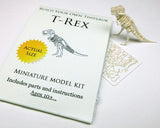 Tiny T-rex skeleton model with instructions
