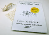 Triceratops miniature skeleton model with instructions