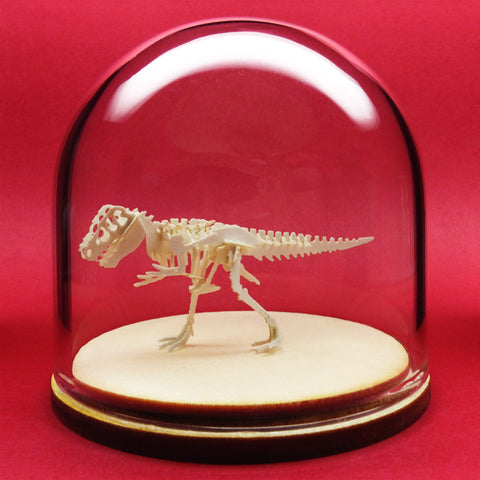 True Rex All-in-one miniature T-rex skeleton model kit