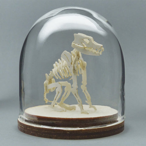 Canine All-in-one miniature skeleton model kit