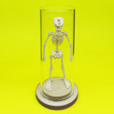 Cyclops All-in-one miniature skeleton model kit