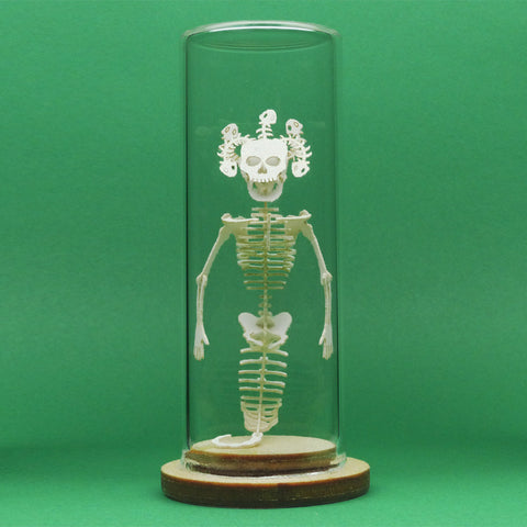 Medusa All-in-one miniature skeleton model kit