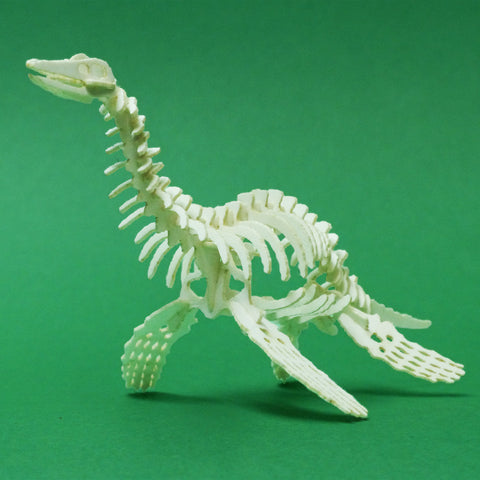 Assembled Plesiosaur miniature skeleton model by Tinysaur.us