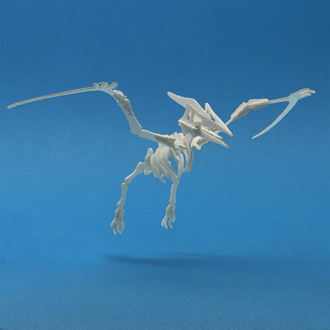 Assembled Pterodactyl mini skeleton model by Tinysaur.us