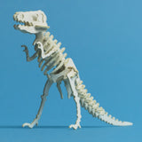 Tiny T-rex skeleton model