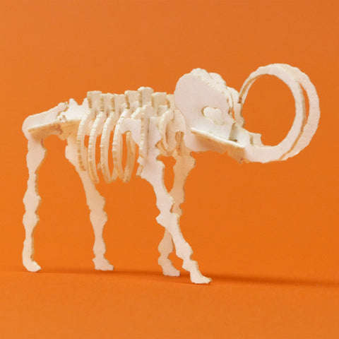 Assembled Woolly Tiny mini skeleton model by Tinysaur.us