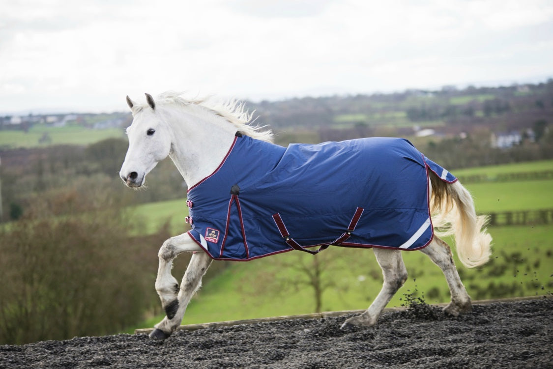 Our Top 5 Horse Rugs for Winter!