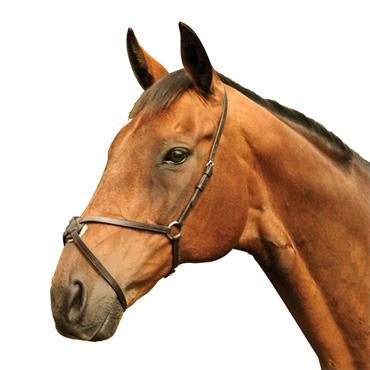 Mackey Classic Grackle Mexican Noseband - RedMillsStore.ie