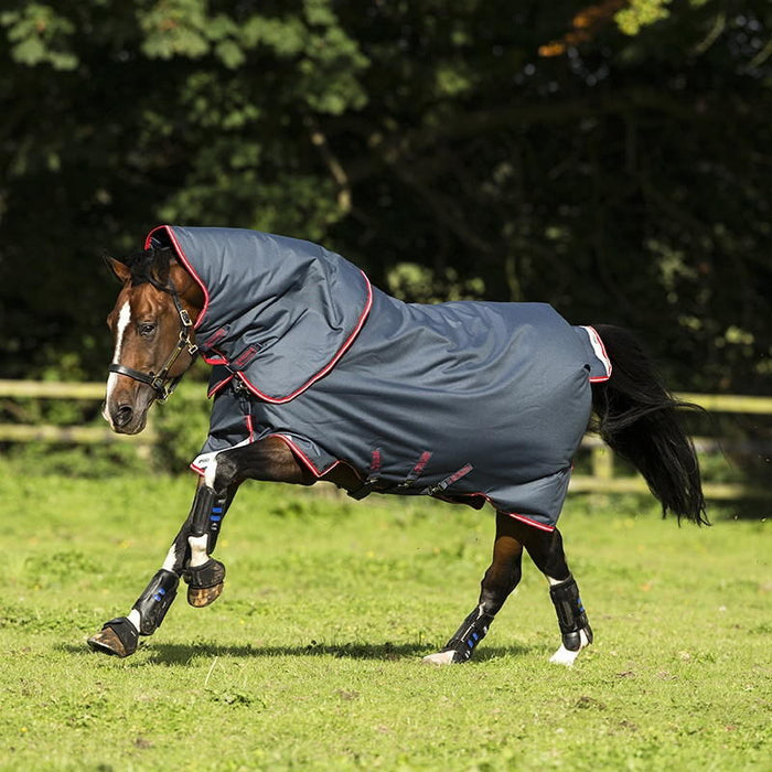 Horseware Amigo Bravo 12 Plus Medium 250g Turnout Rug - RedMillsStore.ie