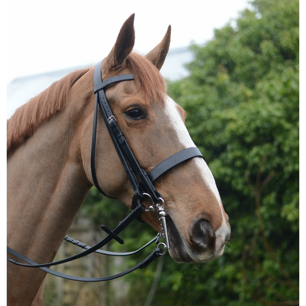 Mackey Classic Double Bridle - RedMillsStore.ie