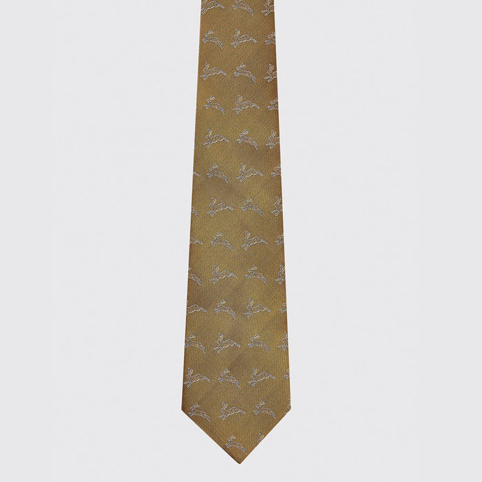Dubarry Lacken Silk Tie in Gold