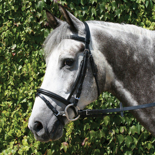 Mackey Legend Flash Bridle - RedMillsStore.ie