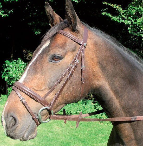 Mackey Classic Padded Bridle and Reins