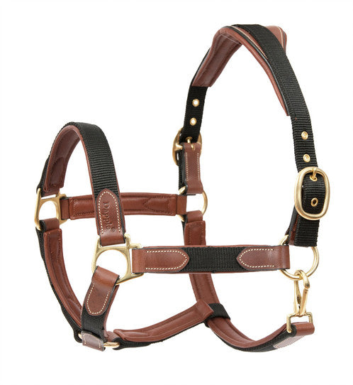 Dapple Equestrian leather and nylon head collar - RedMillsStore.ie