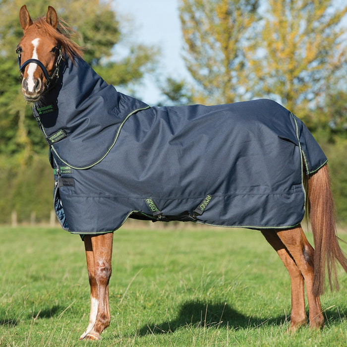 Horseware Amigo Bravo 12 Pony Plus Medium Weight Turnout - RedMillsStore.ie