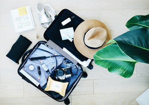 Carry-on baggage hand luggage essentials long haul flight