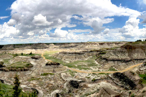 Horseshoe canyon alberta