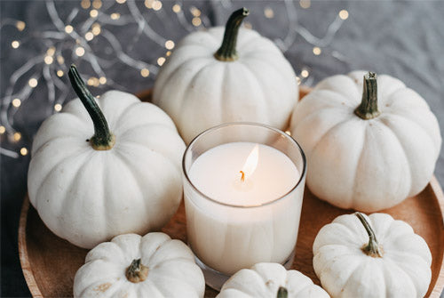White pumpkin fall home decor
