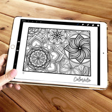 Load image into Gallery viewer, colorado usa coloring pages | state map coloring pages for adults | Coloring pages for kids | usa map coloring sheets | state map coloring page | united states coloring page | united states of america | map of america