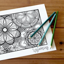 Load image into Gallery viewer, wyoming usa coloring pages | state map coloring pages for adults | Coloring pages for kids | usa map coloring sheets | state map coloring page | united states coloring page | united states of america | map of america
