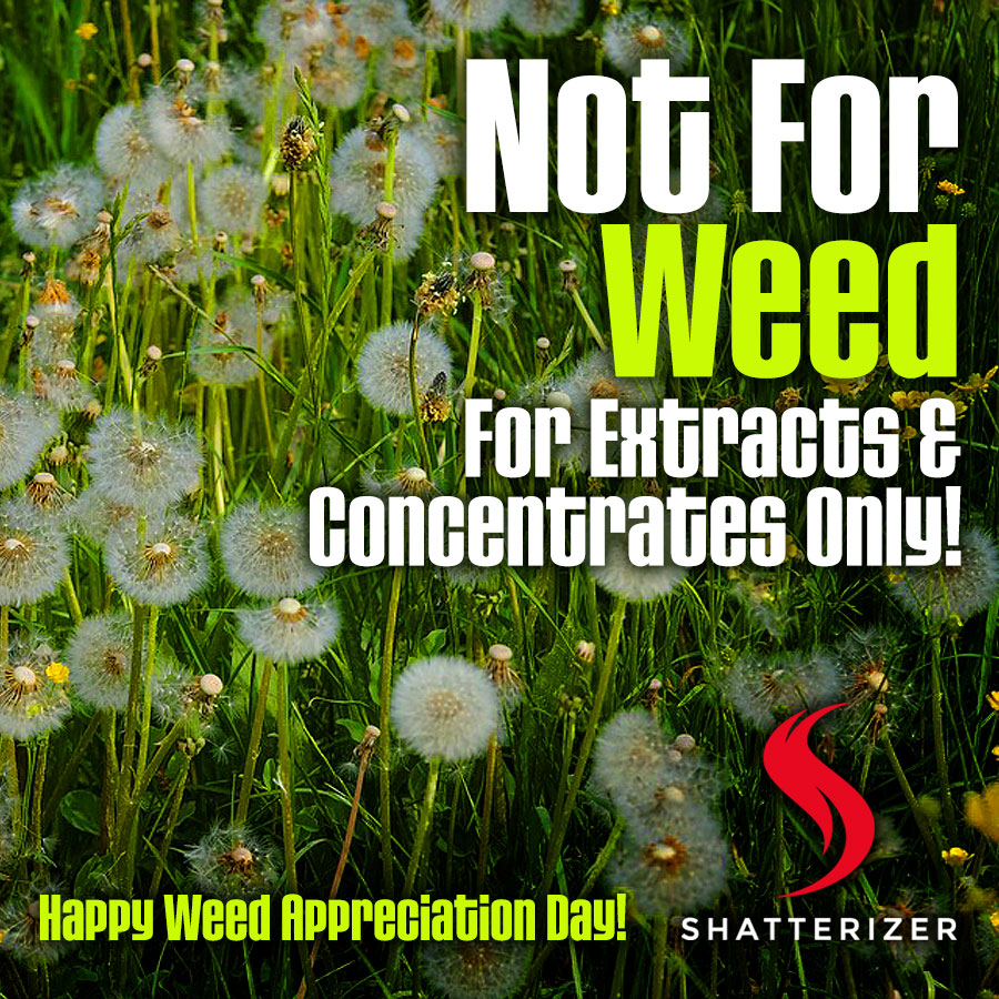 Happy WEED Appreciation Day! But …