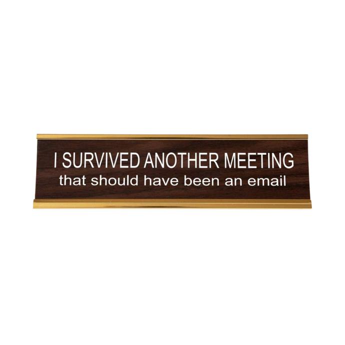 I Survived Another Meeting That Should Have Been An Email Deskplate