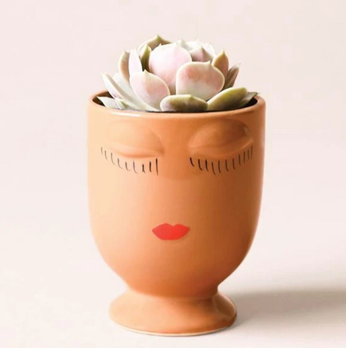 Celfie Mini Planter - 3 Colors