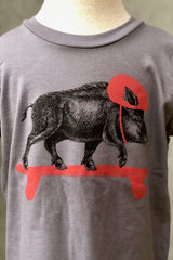 Kid's Graphic Tee-Skateboarding Pig