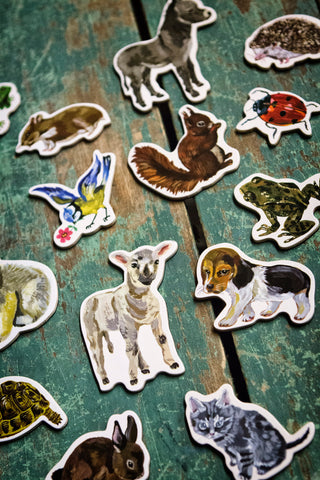 Animal Magnets Set Vilac 20 Magnets Painterly Style Illustrations Close-up View