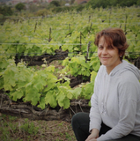 New Year - New Wine!  Flight School with Liz from Jose Pastor Selections (01/23)