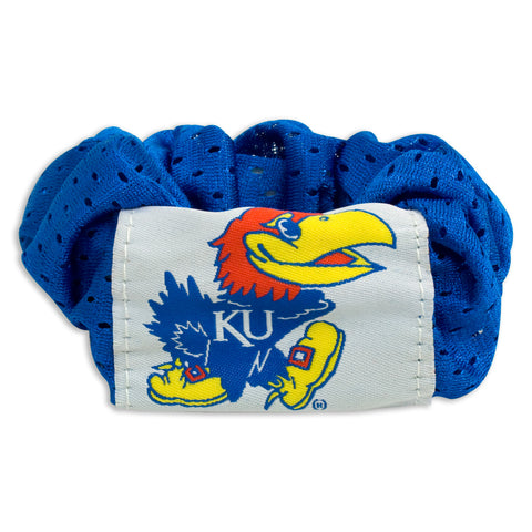Kansas Jayhawks Hair Twist - Charm14