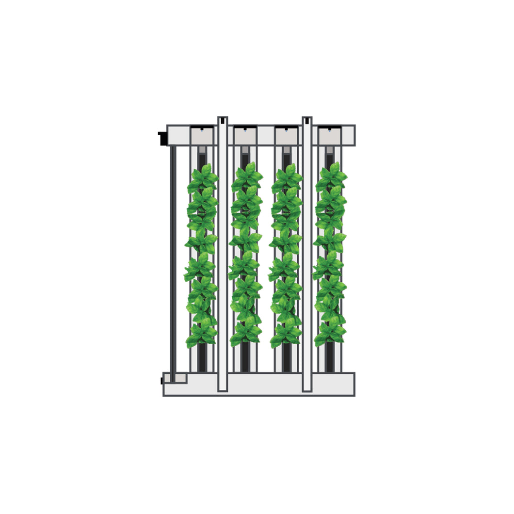 Full Package Monthly Rental: 4 Tower FarmWall™ with LED Lights and Seedlings