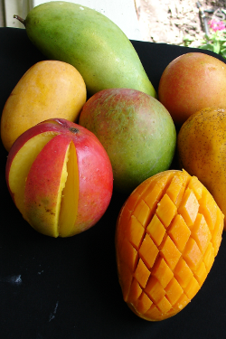 Mango Fruit Gift Box