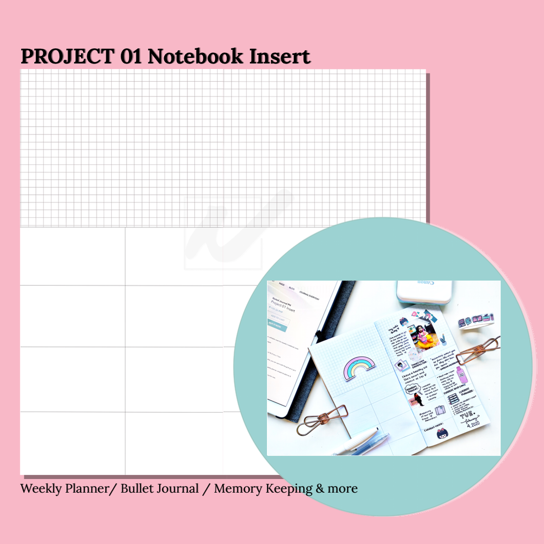 Project 01 Insert