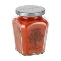 Petite Jar Candle - Fall Harvest Spice