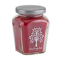 Petite Jar Candle - Holiday Cinnamon Snaps