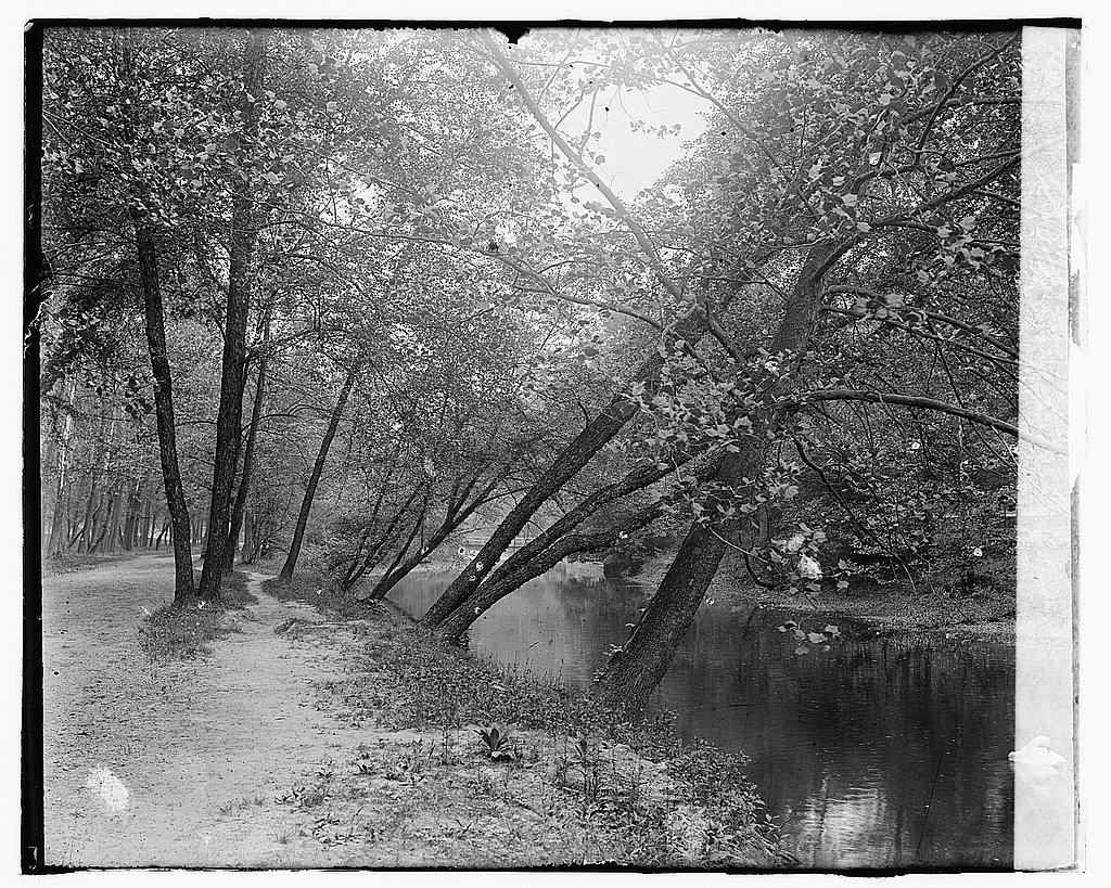 16 x 20 Gallery Wrapped Frame Art Canvas Print of Rock Creek Park 1919 National Photo Co  29a