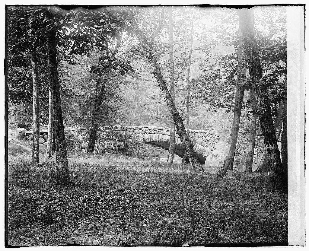 8 x 10 Reprinted Old Photo of  Rock Creek Park 1919 National Photo Co  84a